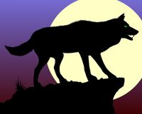 Zwarte wolf Royalty-vrije Stock Fotografie
