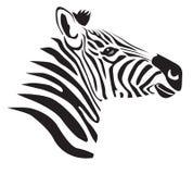 Zwarte zebra Stock Afbeelding