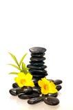Zwarte zenstenen met een bamboe en gele bloemen Stock Foto's