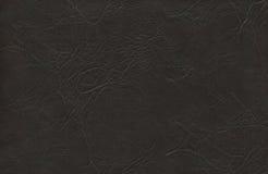 Zwarte zweep - Leer Stock Afbeelding