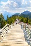 Zwavelberg in Canadese Rotsachtige Bergen van het Nationale Park van Banff Royalty-vrije Stock Foto's