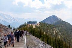 Zwavelberg in Canadese Rotsachtige Bergen van het Nationale Park van Banff Royalty-vrije Stock Afbeeldingen