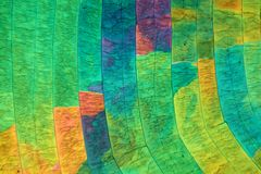 Zwavelkristallen onder de microscoop Stock Foto's