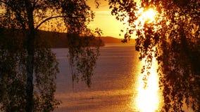 Zweden in de zomer stock videobeelden
