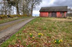 Zweeds dorp in lentetijd Stock Afbeeldingen