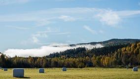 Zweeds landbouwbedrijf in de herfst 3 Stock Fotografie