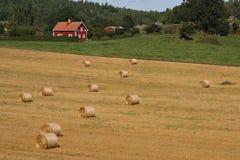 Zweeds landschap stock afbeeldingen