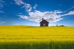 Zweeds zomer-huis stock foto's