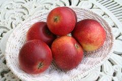 Zweedse appel - Ingrid Marie - in mand Stock Foto