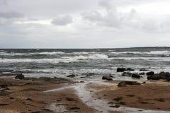 Zweedse kust Stock Afbeeldingen