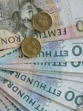 Zweedse muntnota's Royalty-vrije Stock Fotografie