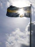 Zweedse vlag royalty-vrije stock foto