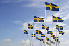 Zweedse vlag Stock Fotografie