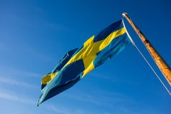 Zweedse vlag die in de wind tegen duidelijke blauwe hemel blazen stock fotografie