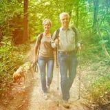 Zwei ältere Leute, die in Wald gehen Lizenzfreie Stockfotos