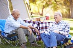Zwei ältere Männer, die an kampierendem Feiertag sich entspannen Stockfotos
