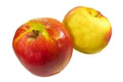 Zwei Äpfel Stockfotografie