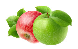 Zwei Äpfel lizenzfreie stockfotografie