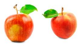 Zwei Äpfel mit grünen Blättern auf einem weißen Hintergrund Stockfotografie