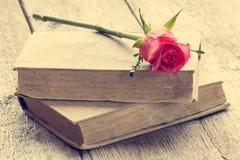 Zwei alte Bücher mit stiegen Lizenzfreies Stockfoto
