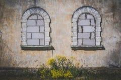 Zwei alte Bogenfenster bedeckt mit den Ziegelsteinen, gelbe Blumen herein Stockfotografie