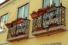 Zwei alte Fenster auf einem Haus mit Blumen Lizenzfreies Stockbild