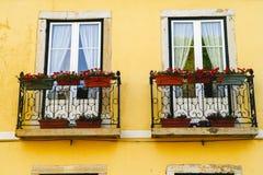 Zwei alte Fenster auf einem Haus mit Blumen Lizenzfreie Stockfotos