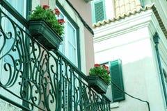 Zwei alte Fenster auf einem Haus mit Blumen Lizenzfreies Stockfoto