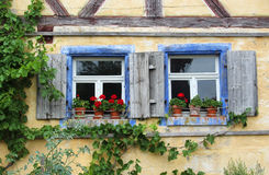 Zwei alte Fenster mit Fensterläden und roten Pelargonien Lizenzfreie Stockfotos