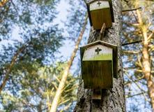 Zwei alte nicht geltende Nistkästen am Stamm einer Kiefer im Wald stockfotos
