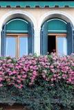 Zwei altes Windows mit Sommerblumen auf dem Gesims in Venedig Italien stockfotografie