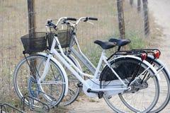 Zwei angebrachte Fahrräder nahe dem Strand lizenzfreie stockfotos