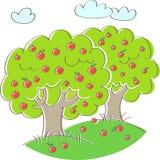 Zwei Apfelbäume Stockbild