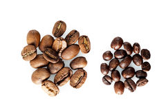Zwei Arten Kaffee: große und kleine Bohnen Lizenzfreie Stockfotografie