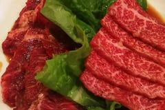 Zwei Arten rohes Fleisch stockbild