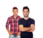 Zwei attraktive junge Männer Stockbild