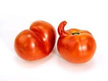 Zwei außergewöhnliche Tomaten Stockbild