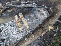Zwei Aufsteckspindeln mit köstlichem saftigem Fleisch liegen über der Asche vom Feuer im Wald in der Reinigung Lizenzfreie Stockbilder
