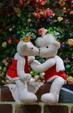 Zwei Bären Lizenzfreie Stockfotografie