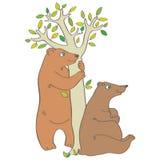 Zwei Bären vektor abbildung