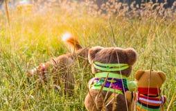Zwei Bärnpuppen in der Sitzposition am Garten, Blick, wie sie den Hund aufpassen stockfoto