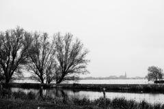 Zwei Bäume, See und Kirche Stockbilder