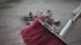 Zwei Bürsten reinigen vom Boden stock video