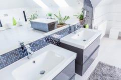 Zwei Bassins im Badezimmer lizenzfreies stockbild