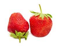 Zwei Beeren einer Erdbeere Stockbilder