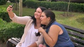 Zwei beleibte kaukasische Freundinnen, die selfie beim Sitzen des Kükens und des lächelnden Sitzens auf Bank im Park nehmen stock video footage
