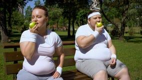 Zwei beleibte Leute, die Äpfel nachdem dem Rütteln, Gewichtsverlustdiät, biologisches Lebensmittel essen lizenzfreie stockbilder