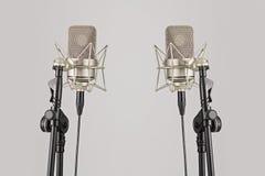 Zwei Berufsmikrophone auf ihren Ständen, mic Stockfoto