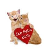 Zwei bezauberte Katzen mit rotem Herzen auf Valentinsgruß Lizenzfreies Stockfoto