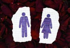 Zwei Blätter Papier mit Hand gezeichneten Mann- und Frauenzahlen auf trockenem Stockfotos